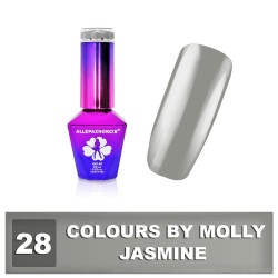 Colours by Molly 10ml 28