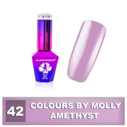Colours by Molly 10ml 42