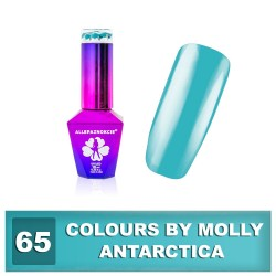 Colours by Molly 10ml 65