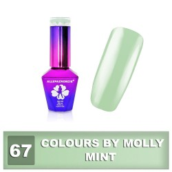 Colours by Molly 10ml 67