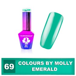 Colours by Molly 10ml 69