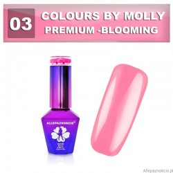Colours by Molly Premium 03 10ml