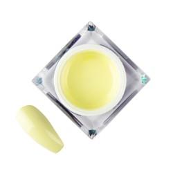 Artistic Gel Molly Lac 14 Lemon 5ml
