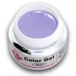 Color gel 5ml 058