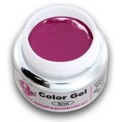 Color gel 5ml 060